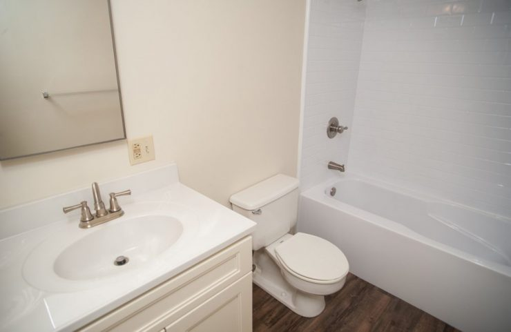 bathroom with plank flooring