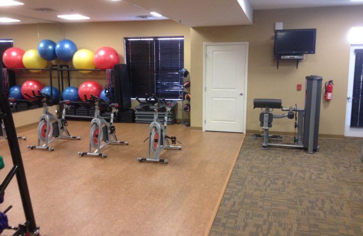 workout balls