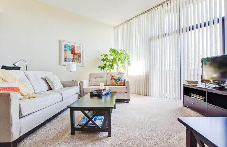 wall to wall carpet and large windows