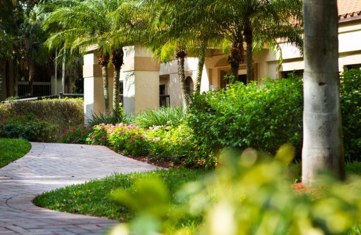 South FL Apartment Rentals