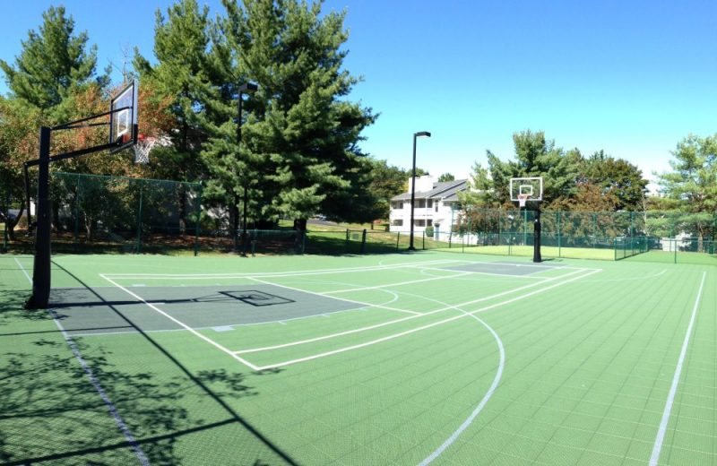 NEW! Multi-sport court