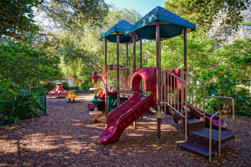 Tree-covered playground