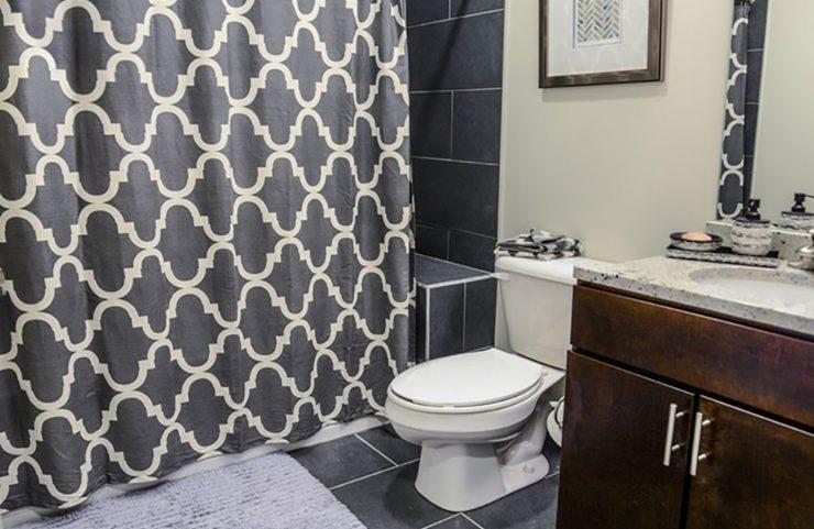 center city apartment rentals