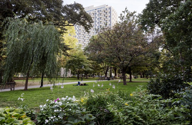 outdoor space in washington square
