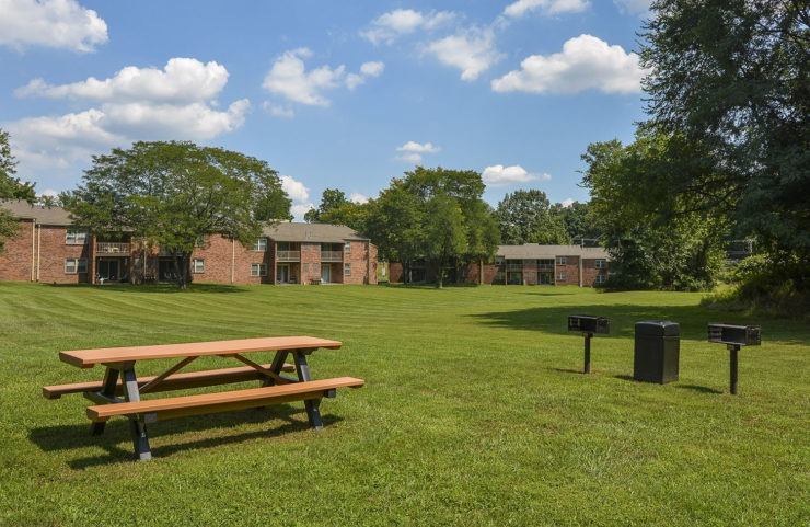 large grassy area with picnic tables and grills