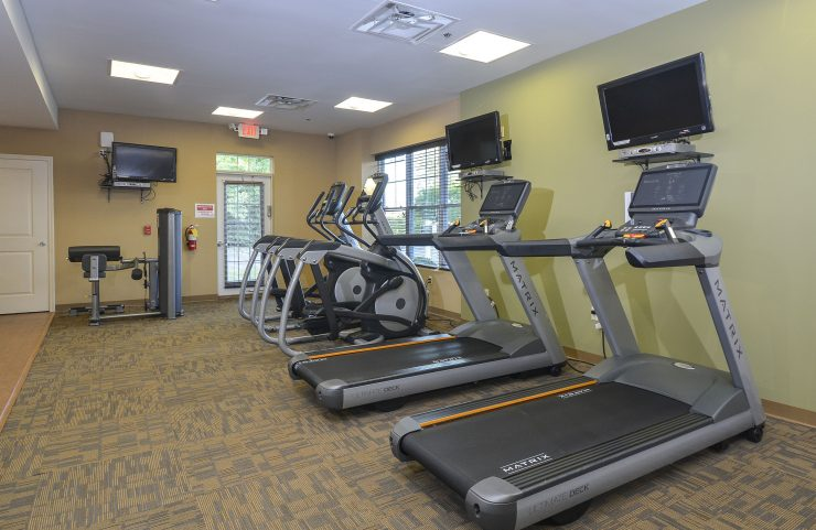 treadmills and elliptical machines