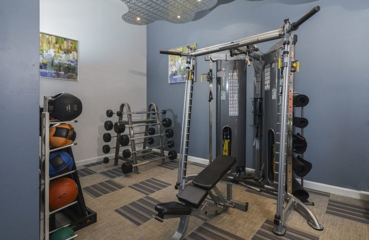 fitness centwe with weight machine