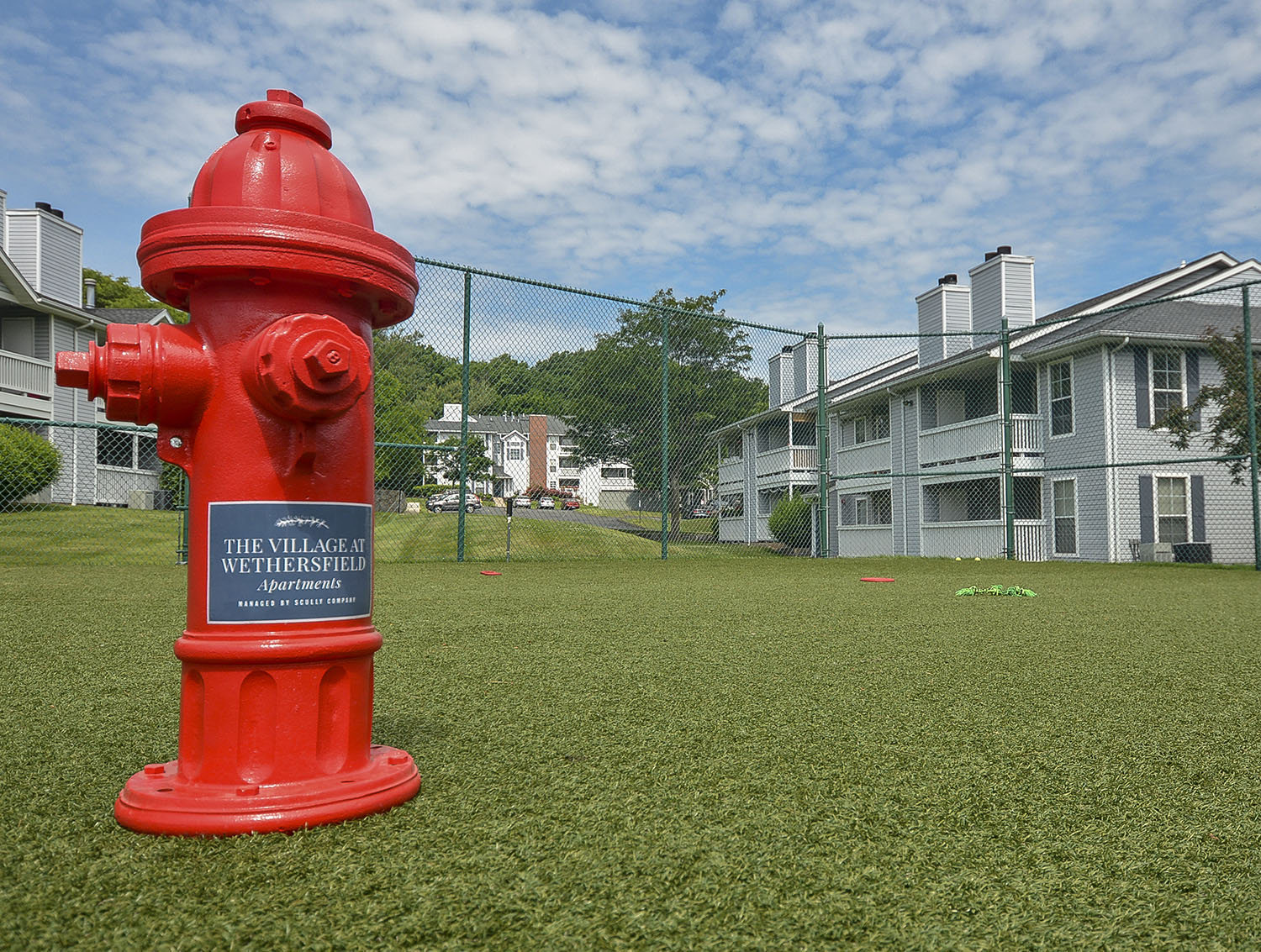 dog park with a red fire hydrant