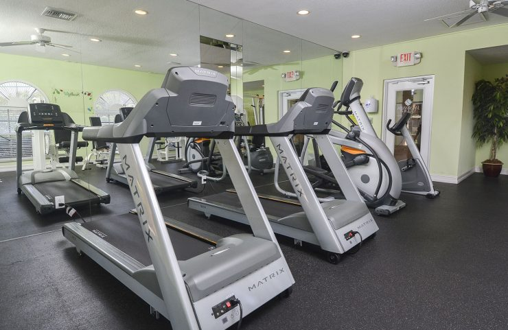 treadmills and elliptical machines in fitness center