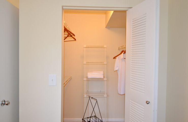 closet with light with plenty of room