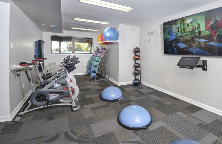 stationary spin bikes