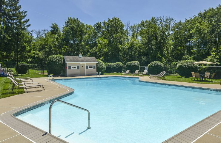 Outdoor Pool with mature trees surrounding