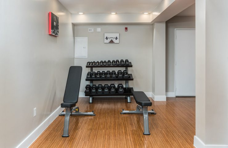 free weights and benches in the fitness center
