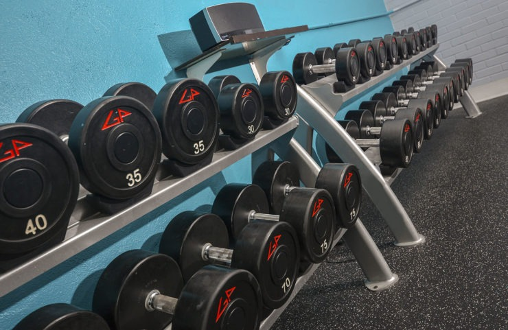 closeup of free weights in fitness center